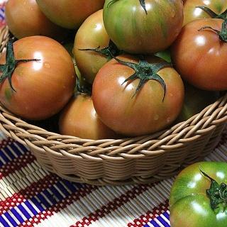 부산대저동 대저토마토 대저농협인증 토마토 짭짤이 상품선택 3S 7번과 56과 내외 - 부산대저동 대저토마토 대저농협인증 토마토 짭짤이
