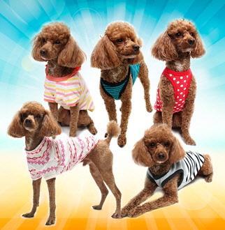 강아지옷 애견 나시 민소매