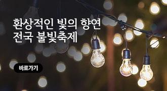 전국 불빛 축제